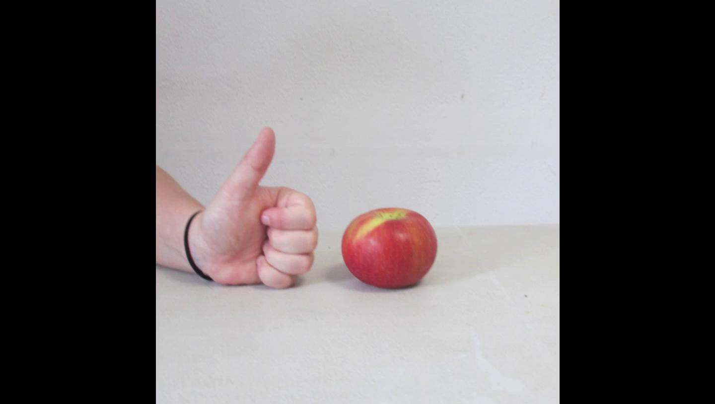 N°8 – Les pommes